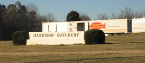 harrison hatchery